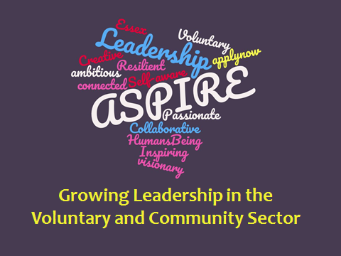 aspire leadership programme main image